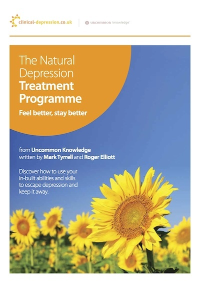 The Natural Depression Treatment Program eBook Cover
